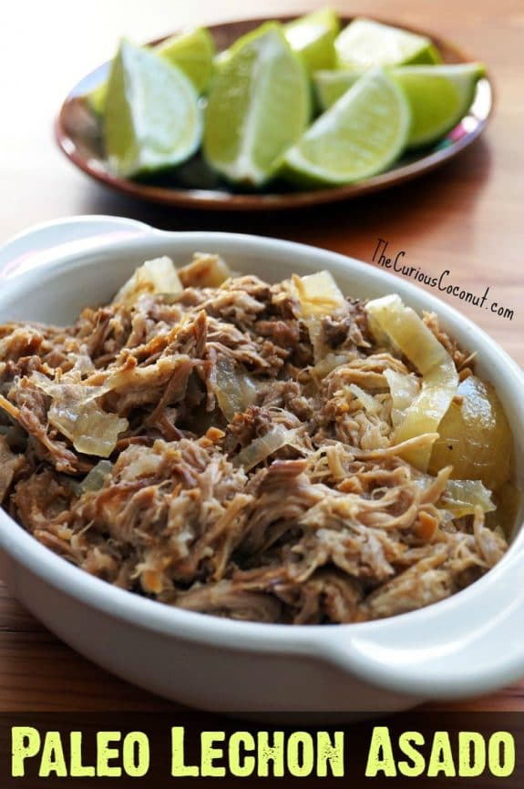 Three Incredible Recipes for Cuban Pork (Slow Cooker or Instant Pot) from Slow Cooker or Pressure Cooker at SlowCookerFromScratch.com