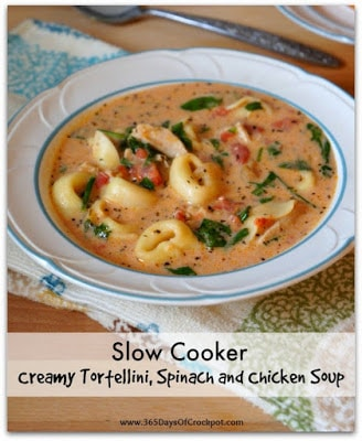The BEST Slow Cooker Chicken Soup Recipes featured on SlowCookerFromScratch.com