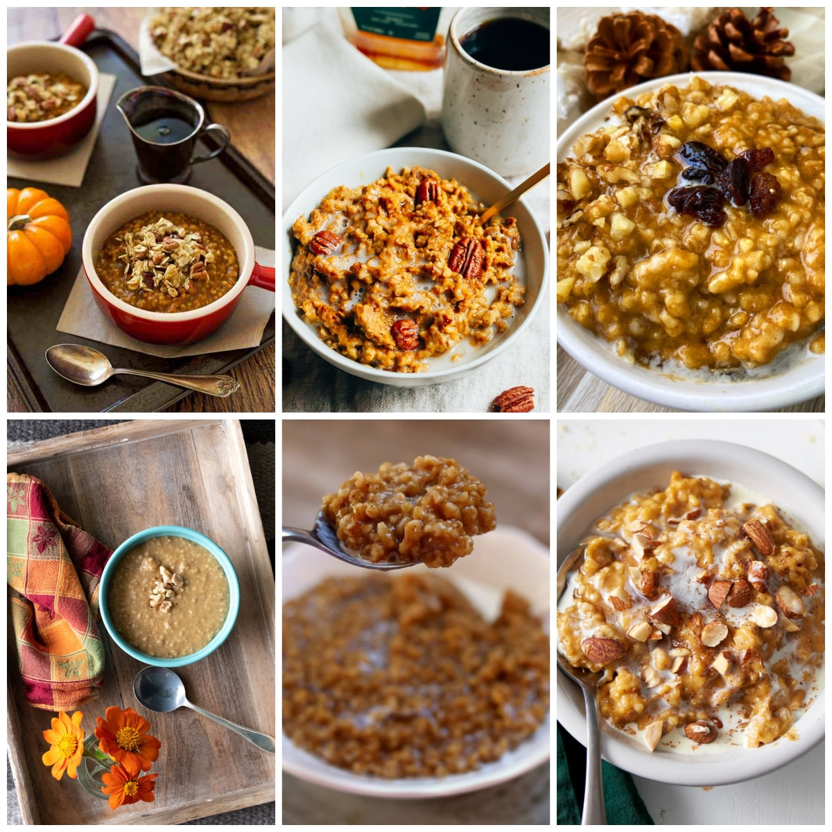 Slow Cooker or Instant Pot Pumpkin Spice Oatmeal Recipes collage photo